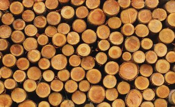 Wood Texture Logs Nature Fototapet