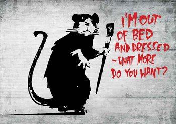 Banksy Graffiti Rat Concrete Wall Fototapeta