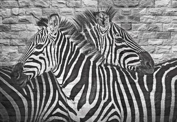 Fototapeta Brick Wall Zebras