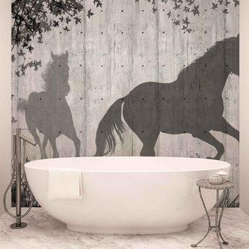 Cień konia na drewnianej ścianie Fototapeta