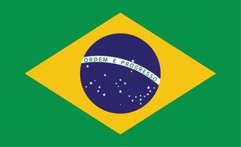 Flaga Brazylii Fototapeta