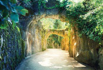 Fototapeta Garden Tunnel