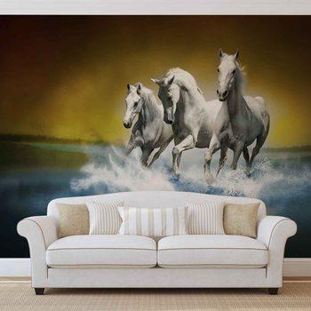 Horses Fototapeta
