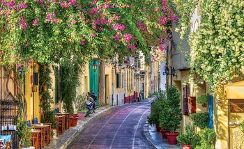 Fototapeta Kaviareň Flower Street Way