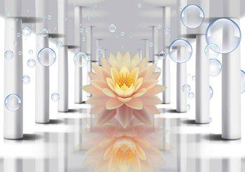 Fototapeta Květina Lotus a bubliny