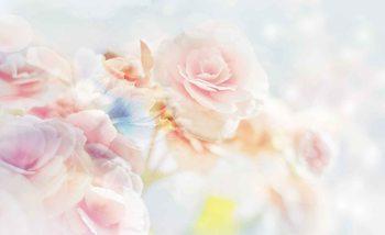 Fototapeta Kvety, ruže, pastelové farby