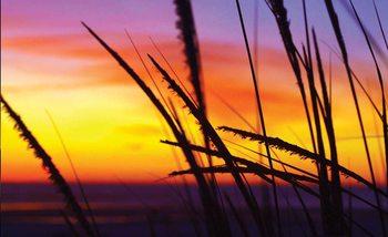 Plaża przy zachodzie słońca Fototapeta