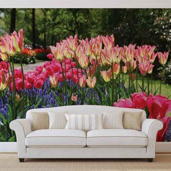 Pole pełne kwiatów Fototapeta