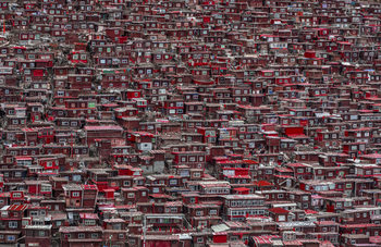 Fototapeta Red houses