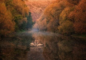 Romantic River Fototapeta