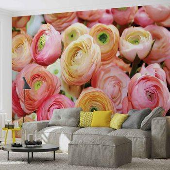 Fototapeta Růžové květiny, barevné pivoňky
