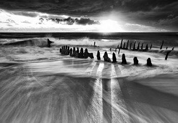 Fototapeta  Sunlight