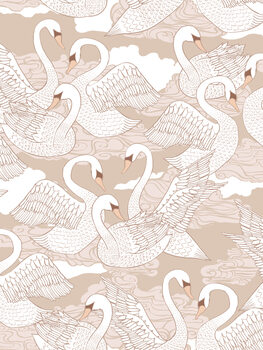 Swans - Cotton Fototapeta
