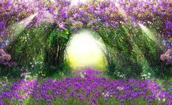 Świtło padajace na foletowe kwiaty Fototapeta