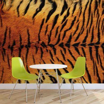 Fototapeta Tiger Skin