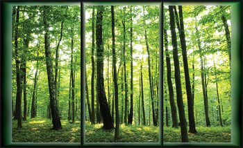 Zielony las Fototapeta