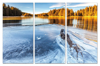 Cuadro Frozen River in Nature