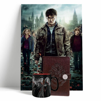 Set de regalo Harry Potter