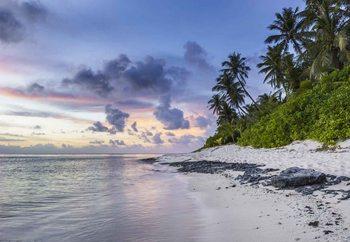 Glasbilder Island Stroll
