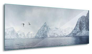Glasschilderij  Arctic Flight