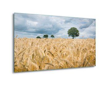 Glasschilderij Harvest Time