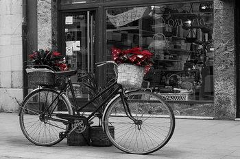 Glasschilderij Old Bicycle - Red Flowers