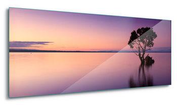 Glasschilderij Sunset Purples