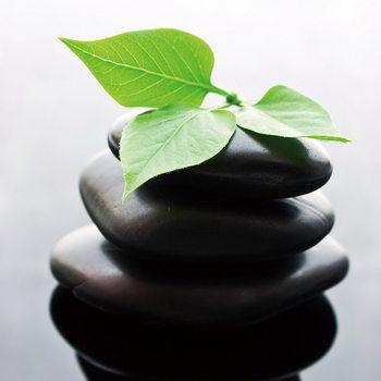Glasschilderij Zen - Green