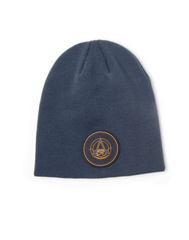 Gorra Assassin's Creed Origins - Crest Logo Beanie