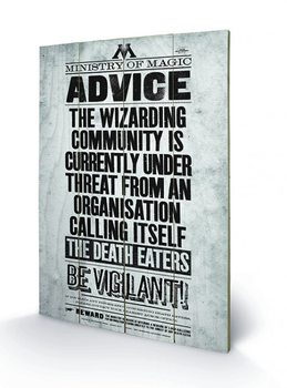 Poster su legno Harry Potter - Be Vigilant