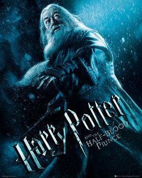 Harry Potter és a Félvér Herceg - Albus Dumbledore Action Festmény reprodukció