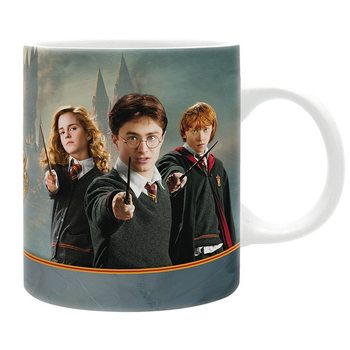 Taza Harry Potter - Harry & Co