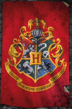 Harry Potter - Hogwarts Flag - плакат (poster)