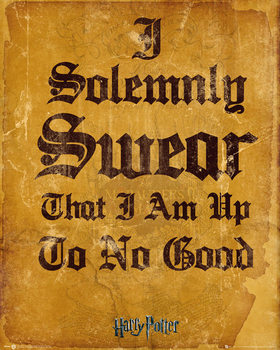 Harry Potter - I Solemnly Swear - плакат (poster)