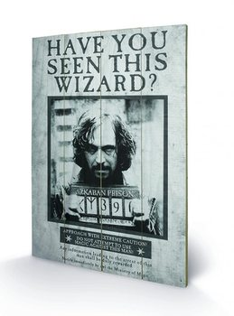 Poster su legno Harry Potter - Sirius Wanted