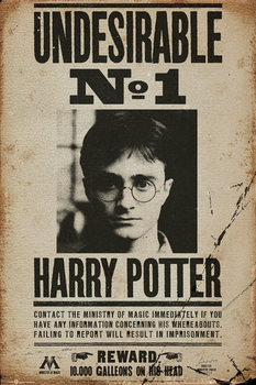 HARRY POTTER - undersirable n1 - плакат (poster)