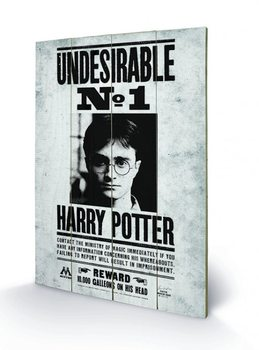 Poster su legno Harry Potter - Undesirable No1