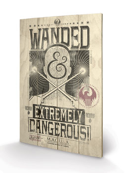 Fantastic Beasts And Where To Find Them - Extremely Dangerous kunst op hout
