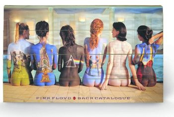 Pink Floyd - Back Catalogue  kunst op hout