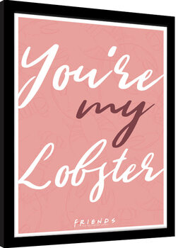 Ingelijste poster Friends - You are my Lobster