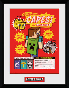 Minecratf - Collect Them All Ingelijste poster
