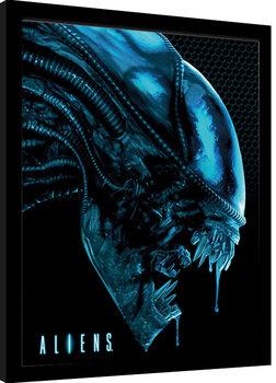 Innrammet plakat Aliens - Head Blue