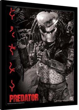 Innrammet plakat Predator - Extraterrestrial Warrior