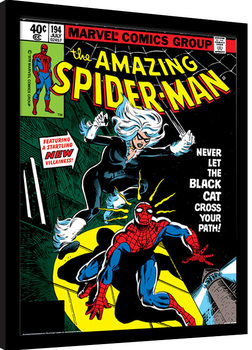 Innrammet plakat Spider-Man - Black Cat