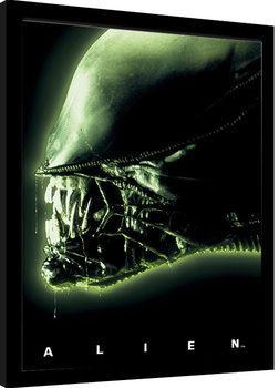 Aliens - Head Green Innrammet plakat