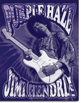 Jimi Hendrix - Purple Haze Metalen Wandplaat