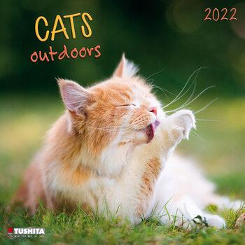 Kalendár 2022 Cats Outdoors