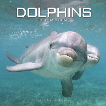 Kalendár 2022 Delfíny