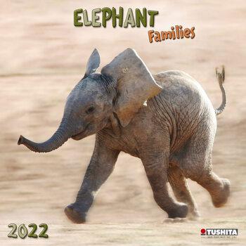 Kalendár 2022 Elephant Families