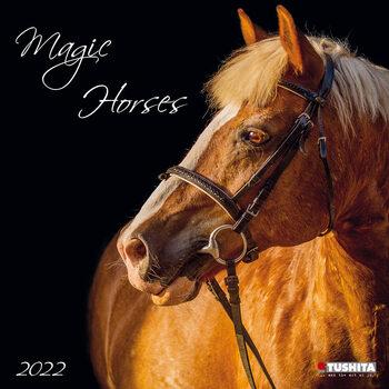 Kalendár 2022 Magic Horses